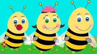 Arı Vız Vız - Combacomba Çocuk Şarkıları