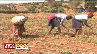 Short season crops gaining popularity - Food Friday