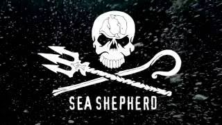 Operation Jeedara: Great Australian Bight Alliance Announcement