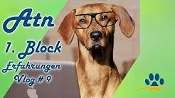 ❌ATN Hundetrainer-Ausbildung, ❌1  Block, Erfahrungen❌, Vlog # 9