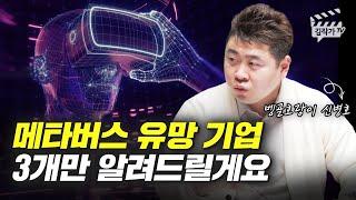메타버스 투자 유망기업 3개 (벵골호랑이 신병호)