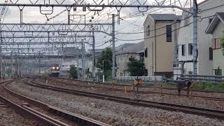 京成3000系 甲種輸送 @藤沢~大船 8862レ EF64 1011+京成3000系3153F