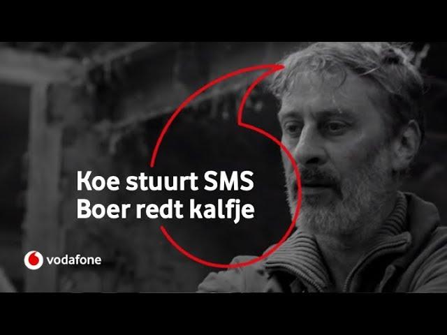 Vodafone Business: Koe stuurt SMS, boer redt kalfje