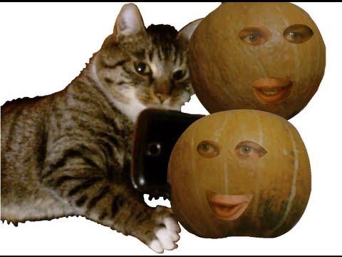 Smartphone für Katzen, Fernsehprogramm für Hunde, Sprechende Früchte - Clip Mix #004
