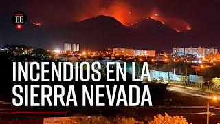 Incendios en la Sierra Nevada de Santa Marta, una tragedia anunciada - El Espectador
