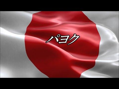 日本第一党   桜井 誠 党首   「パヨク」