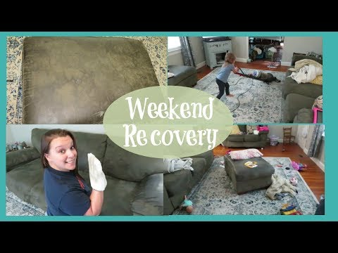 Cleaning My Microsuede Couch | Weekend CLEAN UP!