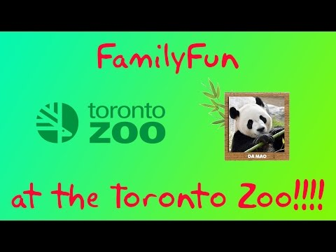 Toronto Zoo Panda cubs and more.  Reagan and Duckies Adventures