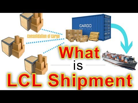 What Is LCL Shipment - LCL Container Less Than Container Load - What is LCL Cargo(LCL Shipping)