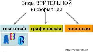 Формы представления зрительной информации текстовая, цифровая, графическая