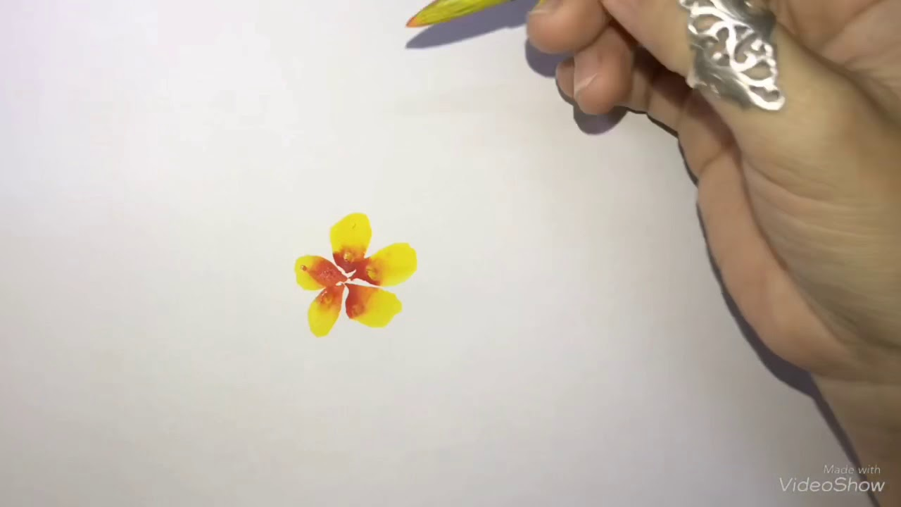 Vẽ Hoa mai