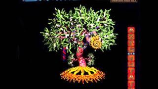 The Shamen - Arbor Bona Arbor Mala (Ambient 1995)