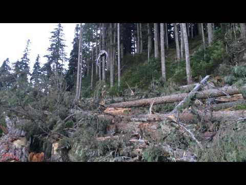 Canadian Air Crane Heli Logging