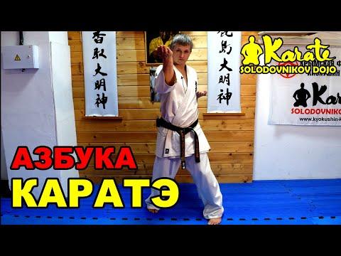 АЗБУКА КАРАТЭ КИОКУШИНКАЙ новый формат для совместной тренировки дома   Kyokushinkai Karate Bible