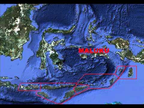 Homeland Hawaiki - Part 6 - Maluku - Aotearoa / New Zealand