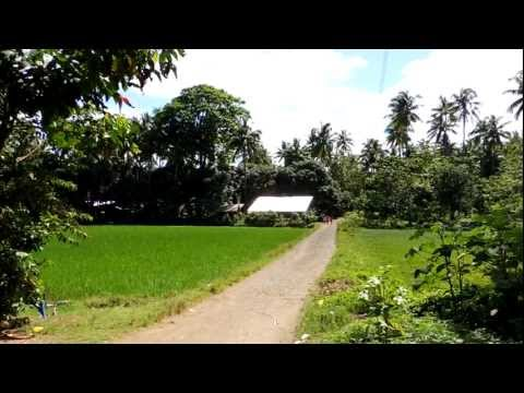 walking the lane into the fishing village in western mindanao