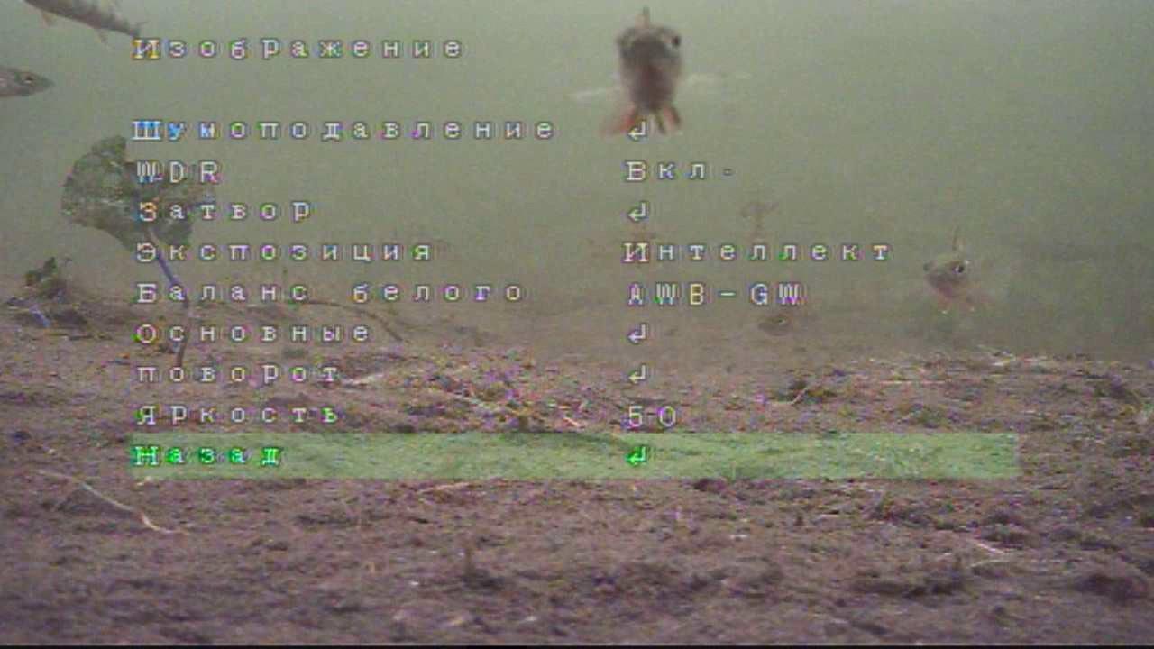 Помимо обычных камер для рыбалки стоит обратить внимание и на подводные камеры. Такие приборы оснащены не просто влагоустойчивым корпусом, но и специальным боксом, не пропускающим ни капли воды. Подводная камера подарит возможность снять захватывающие фото и видео во время.
