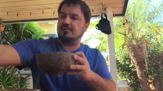 Cactus Kava - 'Eva