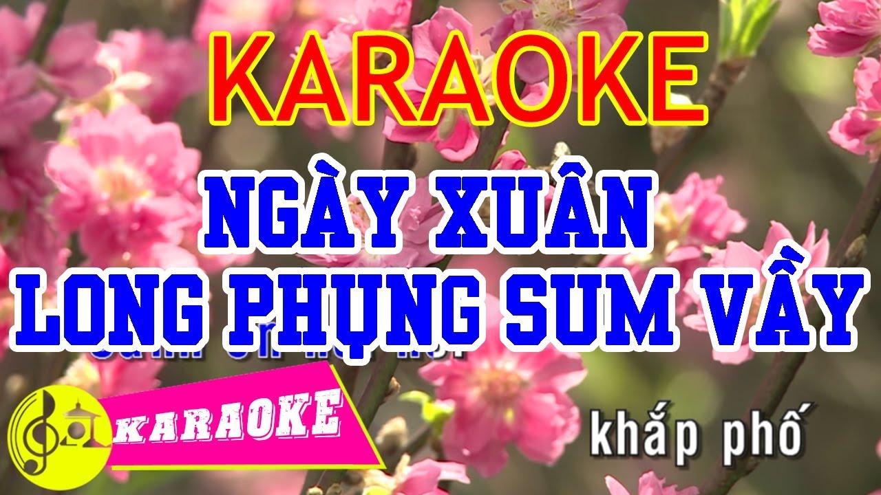Ngày Xuân Long Phụng Sum Vầy Karaoke    Beat Chuẩn