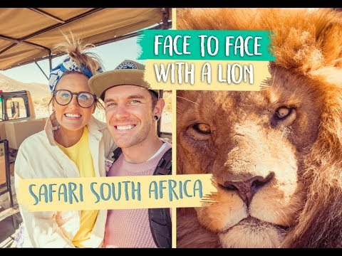 INCREDIBLE AFRICAN SAFARI! 🦁CAPE TOWN SOUTH AFRICA