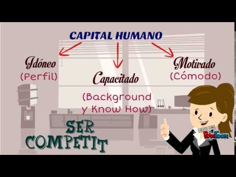 Importancia Del Capital Humano En La Organizacion Youtube