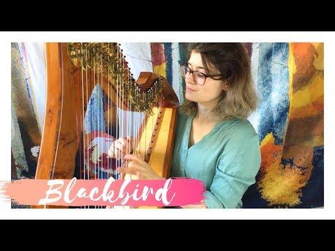 BLACKBIRD - THE BEATLES - HARP COVER - SAM MACADAM