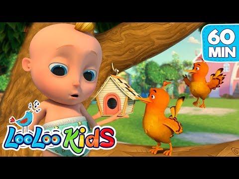 two-little-dickie-birds--educational-looloo-kids-songs