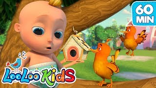 Two Little Dickie Birds- Educational LooLoo KIDS songs