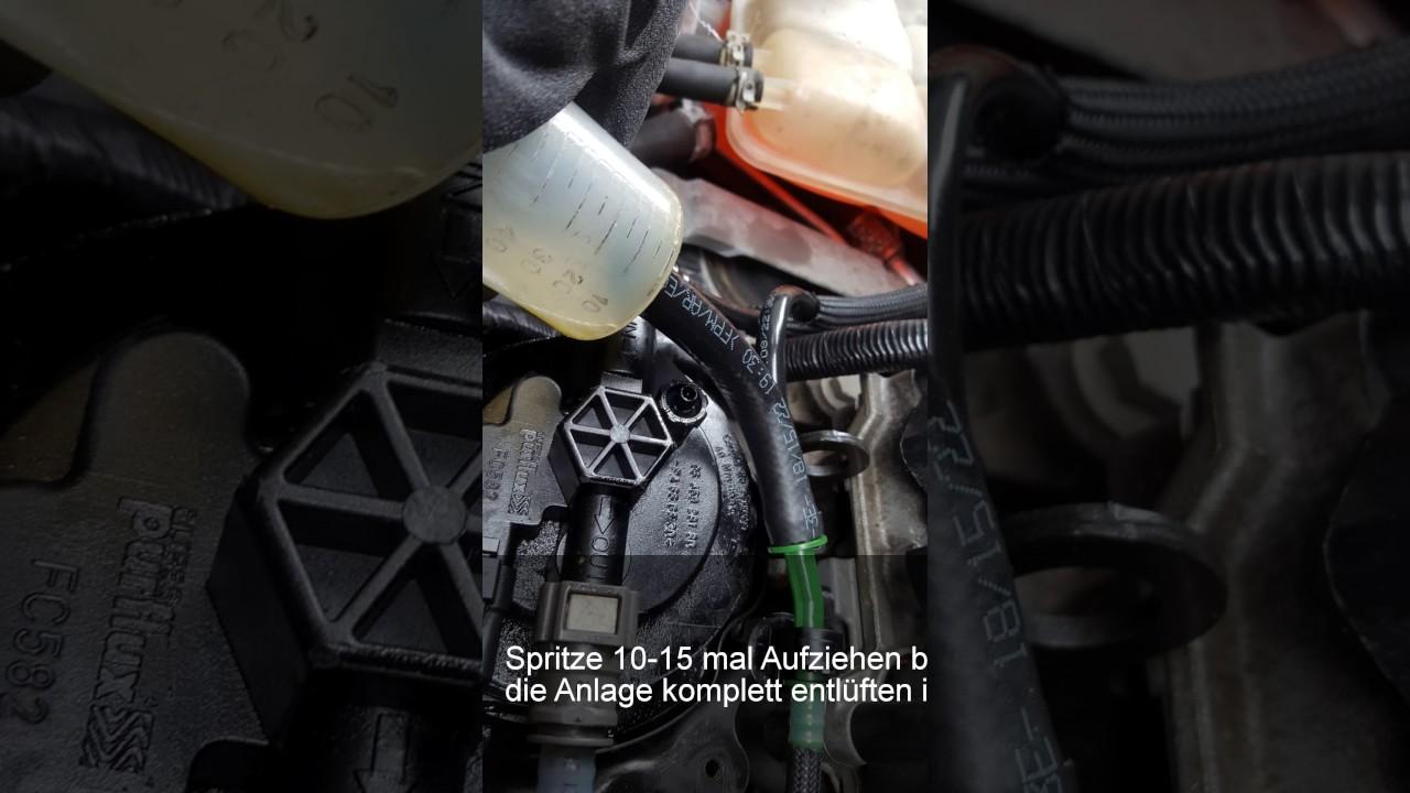 Ford Kuga Kraftstofffilter entlüften Dieselfilter ...