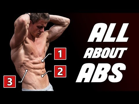 ABS Unleashed  | The Only Guide You'll Need