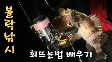 볼락낚시 배우기 /볼락회 뜨는법(손질법)배우기