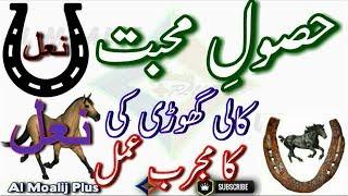 Video Muhabbat Me Pagal Karne Ka Amal || Kali Ghori Ki Naal Ka Best Amal || By Al Moalij Plus download MP3, 3GP, MP4, WEBM, AVI, FLV Juli 2018