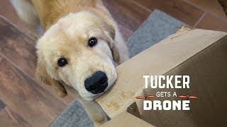 Tucker Gets a Drone