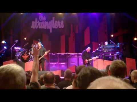 The Stranglers Brighton March 2017 live