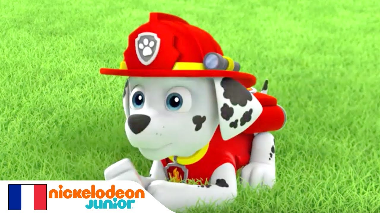 paw patrol la pat 39 patrouille pisodes in dits nickelodeon junior youtube. Black Bedroom Furniture Sets. Home Design Ideas