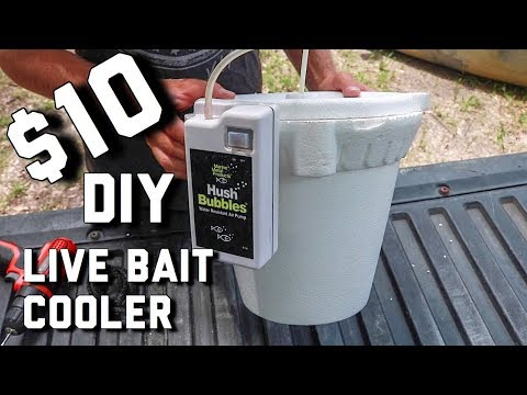 Cheap Way To KEEP LIVE BAIT LONGER