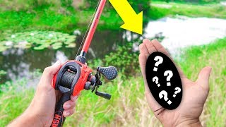 Searching for BIG Bass w/ NEW Baits (Fall Bank Fishing)