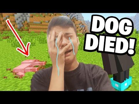 POLAR BEAR KILLED MY DOG! (Emotional) | Survival #2