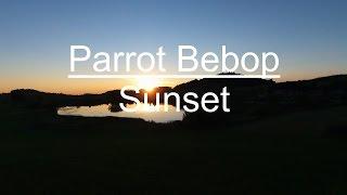 Parrot bebop Abendrot
