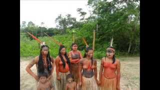 Uma semana na aldeia de indios na amazonia - outubro 2011