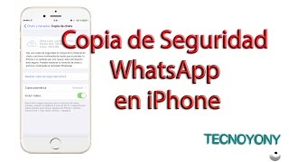 Copia de seguridad de WhatsApp en iPhone.