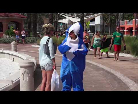 Beach Life - Clearwater Beach - Florida 2017 - Vlog