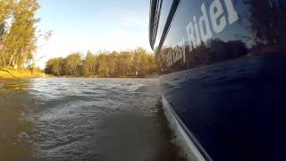 Cruising the Murray River to Echuca