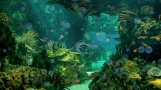 Покровкова Н  А рыбы в море плавают вот так(, 2016-10-16T04:42:56.000Z)