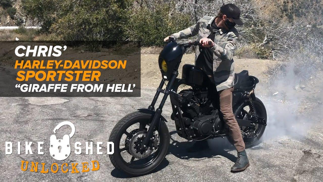 "Chris' Harley-Davidson XL1200S ""Giraffe From Hell"""