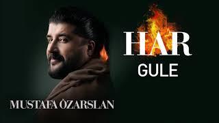Gule - Mustafa Özarslan Resimi