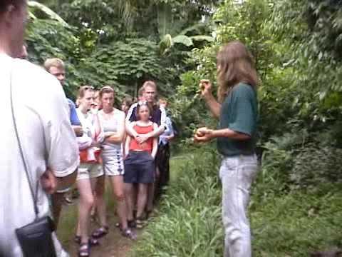 Byron Bay, Jim's Alternative Tours: PAUL RECHER 2000