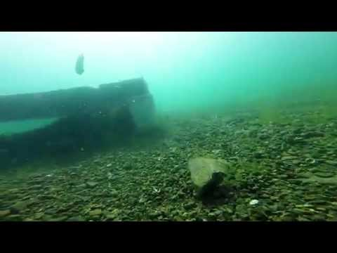 Check Out Dive With Blue Marble Divers @ Lake Phoenix, VA 5-30-15