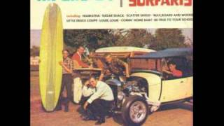 The Surfaris  Scatter Shield