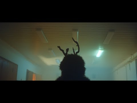 Zrní - Hýkal (Official Video)